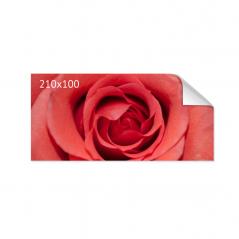 Наклейка 100х210 мм